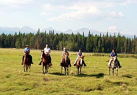 Group of horsemen trot through a meadow.